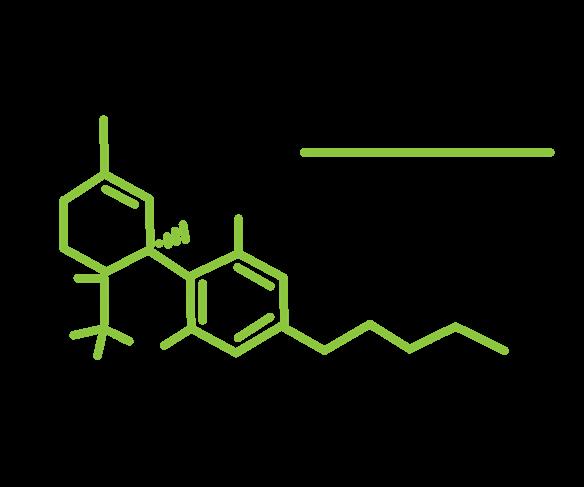 THC Molecule Diagram