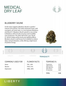 BLUEBERRY SKUNK  - Dry Leaf Marijuana