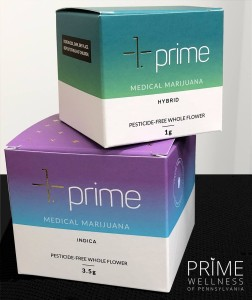 Dry Leaf Marijuana - Prime Wellness of Pennsylvania